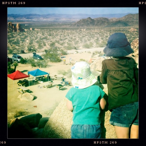 Joshua Tree camping with kids #4
