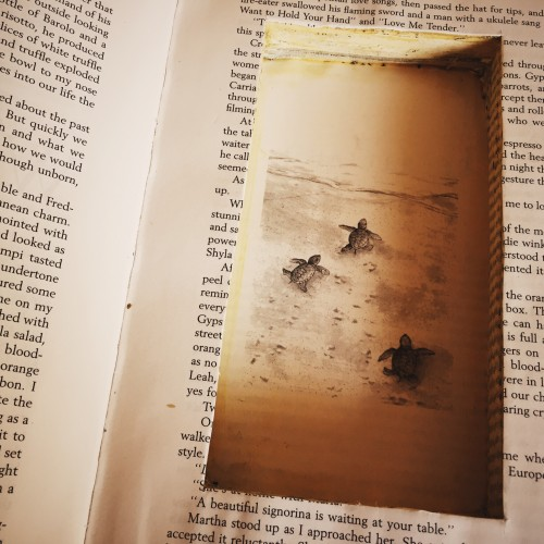 DIY hollow book safes for kids