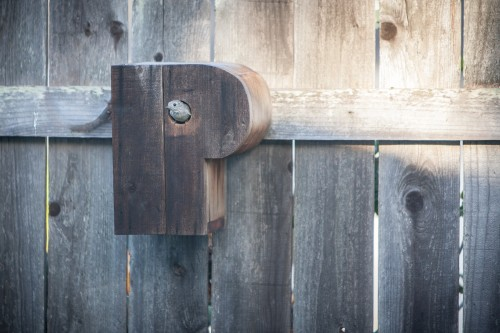 DIY Letter shape birdhouses [U]